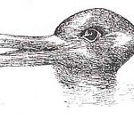 Thomas Kuhn used this optical illusion of a duck (or rabbit) to illustrate how a paradigm shift can cause people to see the same information as something totally different. You see a duck; I see a rabbit. We are both correct.